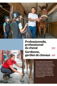 Flyer A6 orientamento.ch Studiare (Plico da 100 es.)